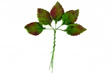 Medium Varnished Rose Leaf (Wired)