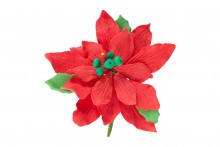 Medium Poinsettia: Red