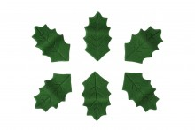 Edible Holly Leaves: Green