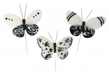 Assorted Designs Black & White Butterflies