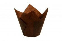 Brown Tulip Case 160mm x 50mm